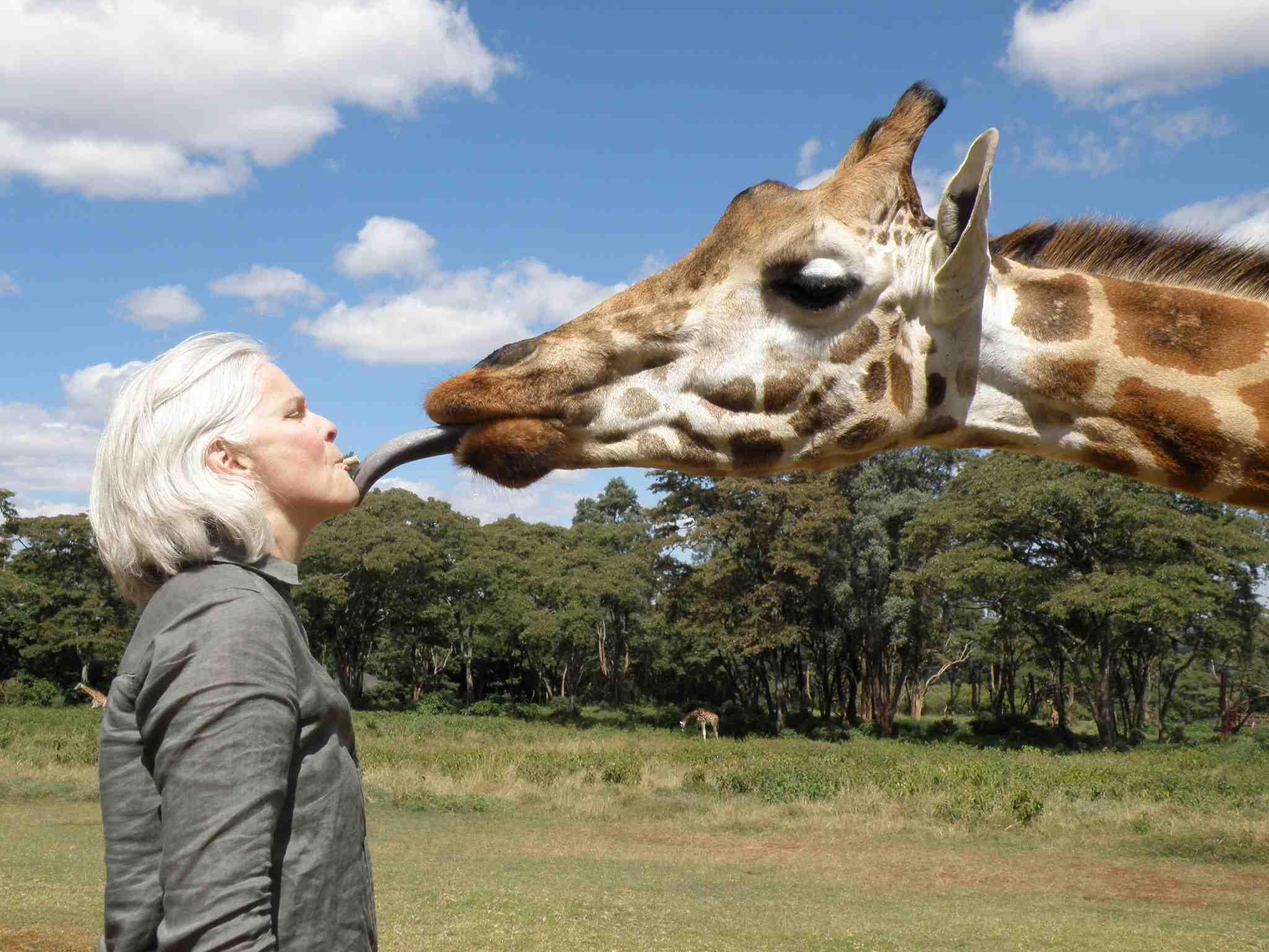 Lori Robinson kisses giraffe