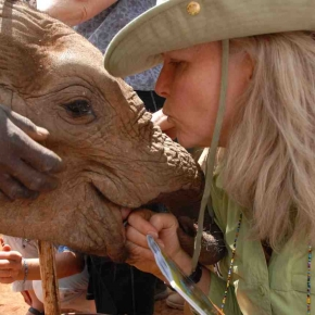 "Daphne Sheldrick says, ""Elephants are like us, but better."""