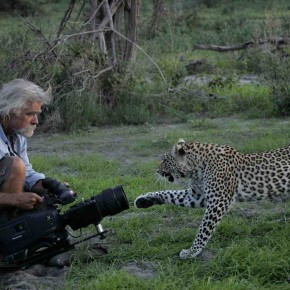 Saving Wild photo