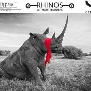 Saving Rhinos: the Good and the Sad