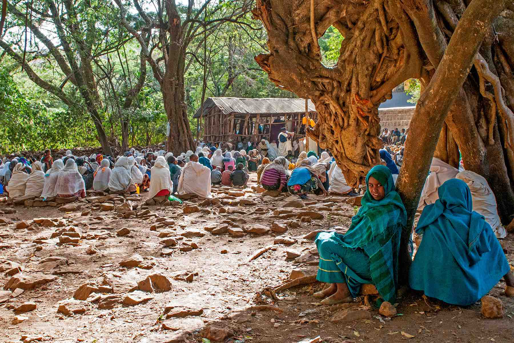 Ethiopia's forests surround churches
