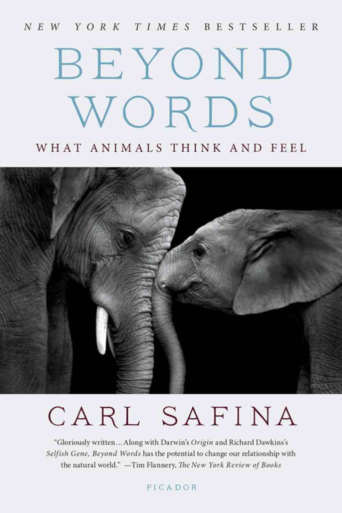 Beyond Words. An interview with Carl Safina and Lori Robinson