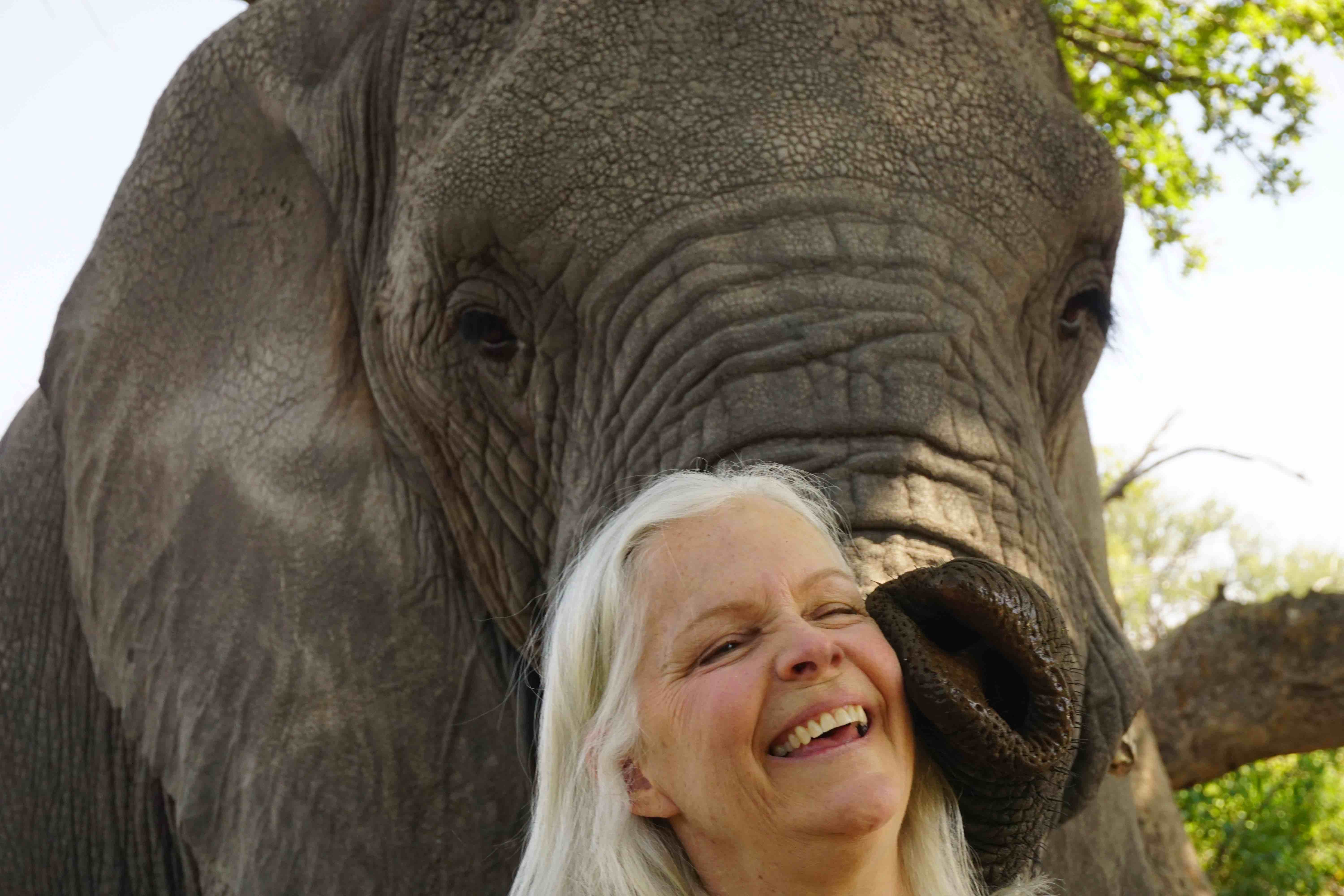 Lori Robinson kissed by an elephant