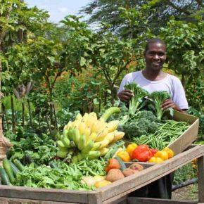 How Permaculture is Saving Kenya's Wildlife